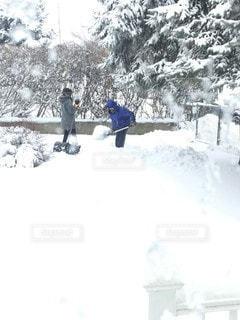 雪かきしたら10ドルね!の写真・画像素材[2281543]