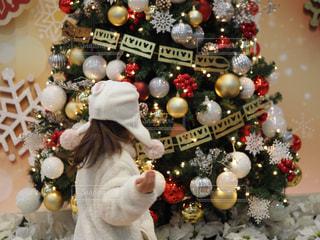 クリスマスツリーの写真・画像素材[2822715]