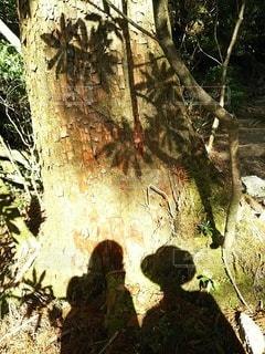 二人の山歩きの写真・画像素材[2263736]