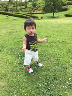 草の上に立っている小さな男の子の写真・画像素材[2292360]