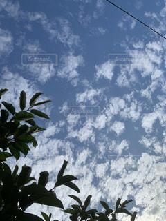 空の写真・画像素材[2414342]