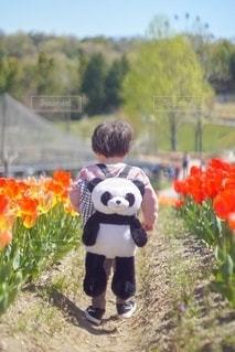 子どもの写真・画像素材[2583941]