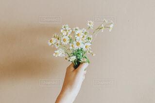 花を手にの写真・画像素材[3662778]