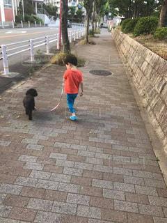 歩道を歩く人々のグループの写真・画像素材[2269835]