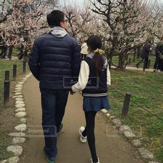 屋外,散歩,レジャー,娘,梅林,お出かけ,親娘,愛しい日々