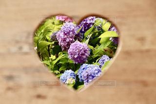 花,綺麗,窓,お花,ハート,紫陽花,梅雨,マーク,アジサイ,イス,柳谷観音,楊谷寺