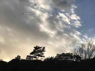 自然,空,屋外,雲,晴れ,夕焼け,散歩,夕方,樹木,鎌倉,くもり,草木,お出かけ,日中,黄昏時