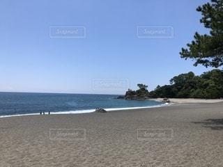 自然,風景,アウトドア,海,空,夏,屋外,青空,砂浜,散歩,海岸