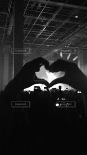 音楽,コンサート,黒と白