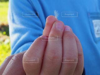青い物体を持つ手の写真・画像素材[2270111]