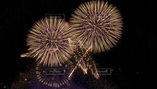 花火は上がった瞬間が1番ワクワクするの写真・画像素材[3609371]