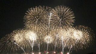 夜空に広がる花火の写真・画像素材[3609373]