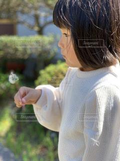 屋外,緑,白,かわいい,青空,散歩,女の子,少女,人物,横顔,人,可愛い,たんぽぽ,幼児,レジャー,綿毛,お散歩,ライフスタイル,おでかけ,キュート,3歳