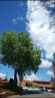 空,屋外,緑,雲,青い空,アメリカ,シルエット,樹木,ハート,パワースポット,セドナ,アリゾナ,マーク,日中