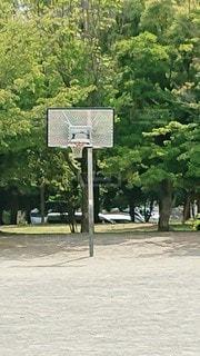 公園のバスケットの写真・画像素材[2276065]