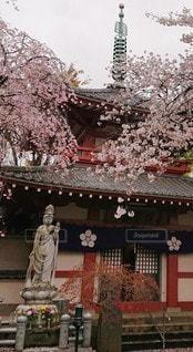 花,寺,さくら