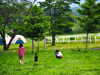 公園,屋外,親子,散歩,キラキラ,キャンプ,テント,レジャー,野外,のんびり,お散歩,おでかけ,ぶらり,シャッターチャンス