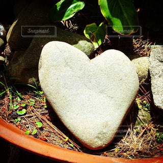 LOVE,かわいい,晴れ,ハート,石,ラブ,恋,はーと