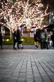 風景,冬,群衆,屋外,光,イルミネーション,道,人,キラキラ,照明,歩道,タイル,明るい,通り