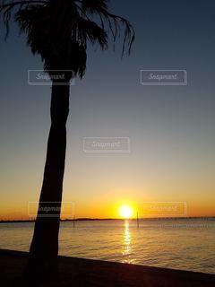 水の上の夕日の写真・画像素材[2331407]