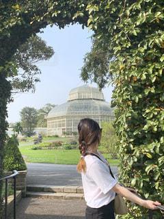 海外,お散歩,お日様,草木,日中,ガーデン