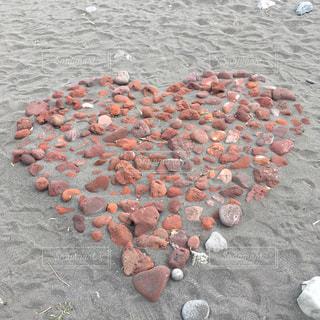 砂浜の車並みの写真・画像素材[2284299]