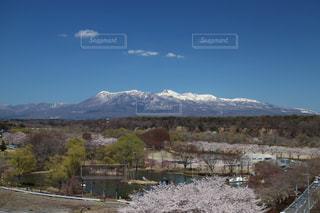 空,公園,桜,雪,雲,山,新緑,那須