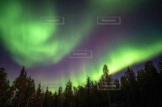 カナダのオーロラと星空の写真・画像素材[3373845]