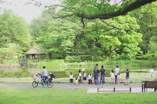 自然,公園,緑,散歩,草,樹木,古民家,休日,レジャー,野外,お散歩,子育て,休日の一コマ
