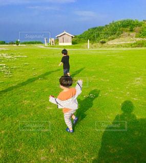 風景,空,屋外,草,幼児,レジャー,お散歩,ライフスタイル,おでかけ
