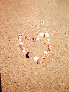 自然,海,夏,海水浴,ビーチ,海辺,貝殻,ハート,浜辺,夏休み