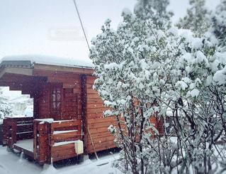 雪に覆われた家の写真・画像素材[2808616]