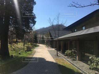 温泉,屋外,散歩,観光,陽だまり