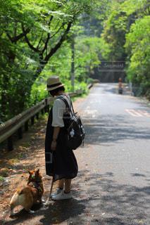 犬,自然,風景,屋外,緑,樹木,人物,新緑,地面,さんぽ,お散歩,ワンコと散歩