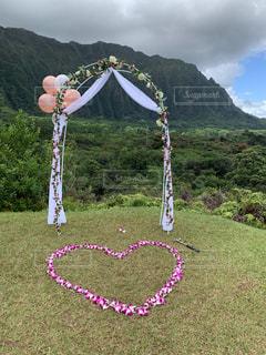 LOVE,バラ,結婚式,ハート,結婚,愛,ハワイ,wedding,植物園,ガーデンウェディング,プルメリア,オアフ,ウェディング,カネオヘ,ウェディングアーチ