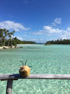 海とココナッツジュースの写真・画像素材[2330962]