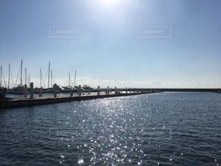 海,空,屋外,太陽,青空,水面,光,キラキラ,港,日中