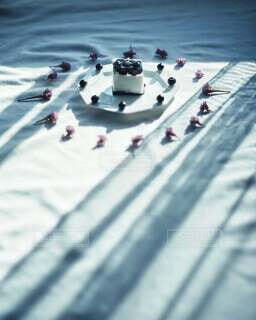 ころころ可愛いブルーベリーのゼリー&チーズケーキ♡の写真・画像素材[3830960]