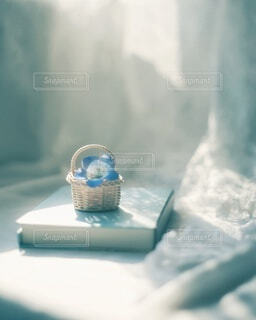 ネモフィラを飾る暮らし💙🤍の写真・画像素材[4310457]