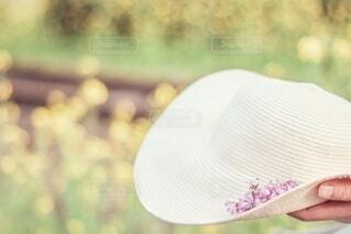 ♡可愛いれんげ草♡の写真・画像素材[4348296]