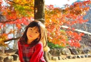紅葉と女の子の写真・画像素材[2512074]