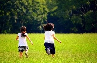 野原でかけっこをする姉妹の写真・画像素材[2528372]