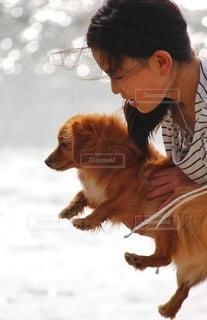 海で遊ぶ女の子と犬の写真・画像素材[2702637]