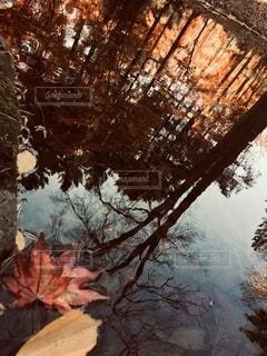 水面に映る寒空の写真・画像素材[2666102]