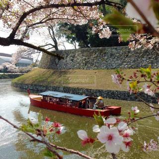 No.150779 風景