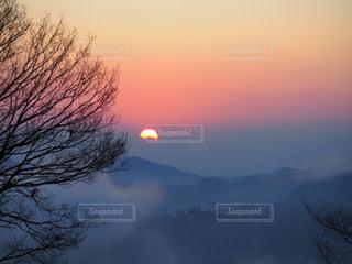 自然,風景,空,森林,太陽,朝日,雲,夕暮れ,霧,光,樹木,雲海,日の出,くもり,日中,神々しい,クラウド