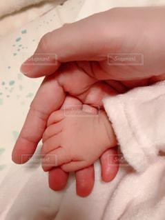 赤ちゃんと母の手の写真・画像素材[2364159]