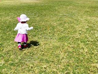 草原の小さな子供の写真・画像素材[3126966]
