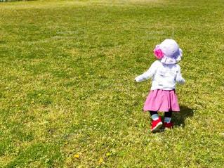 野原で凧を飛ばす小さな女の子の写真・画像素材[3165526]