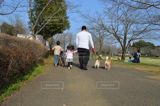 家族みんなでお散歩中の写真・画像素材[2618309]